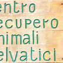 Centro di Recupero Animali Selvatici di Vanzago