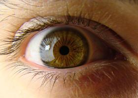Guardati negli occhi: come leggere l'iride