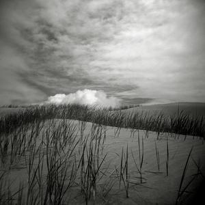 Silent landscape