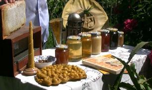 Tutti i prodotti dell'apicoltura