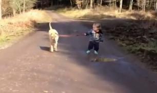 A spasso con il cane...
