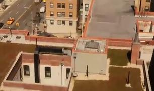 Verdi prati sui tetti di Manhattan