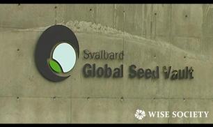 La banca che conserva i semi delle piante commestibili del pianeta