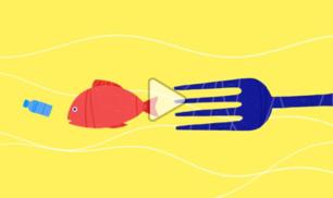 Quanta plastica ti stai mangiando?