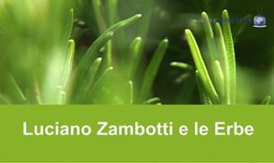 Luciano Zambotti: le erbe queste sconosciute