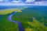 Ecco quanti alberi servono per salvare la Terra