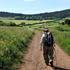 Le Breton: «Camminare rimette in ordine il caos interiore»