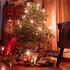 Il regalo di Natale perfetto è solidale, ecologico e sostenibile
