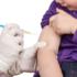Epatite A, si riaccende il dibattito sulle vaccinazioni