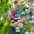 Le buone regole per combattere il cancro a tavola (anche in estate)