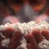 Il libro nero dell'amianto in Italia