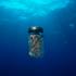 Anche il sale marino è contaminato dalle microplastiche