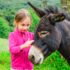 La riscoperta dell'asino per la pet therapy e nel campo dei cosmetici