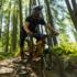 Dalla Valtellina al Danubio, l'Europa è a misura di cicloturisti
