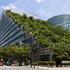 Le città respirano grazie ai tetti verdi