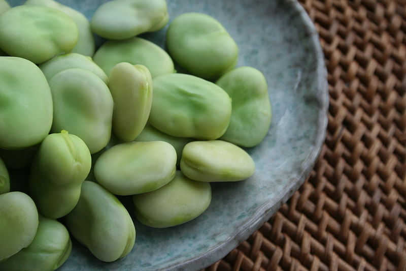 Broad beans, shelled and lightly cooked.