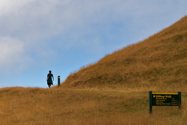 The start of the walk to Wharariki Beach, album di Aaron Jacobs/flickr