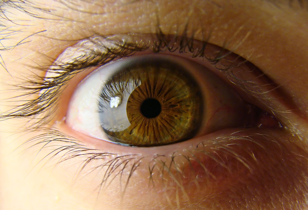 Eye, album di no3rdw/flickr