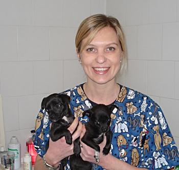 Chiara Bruschi, veterinario