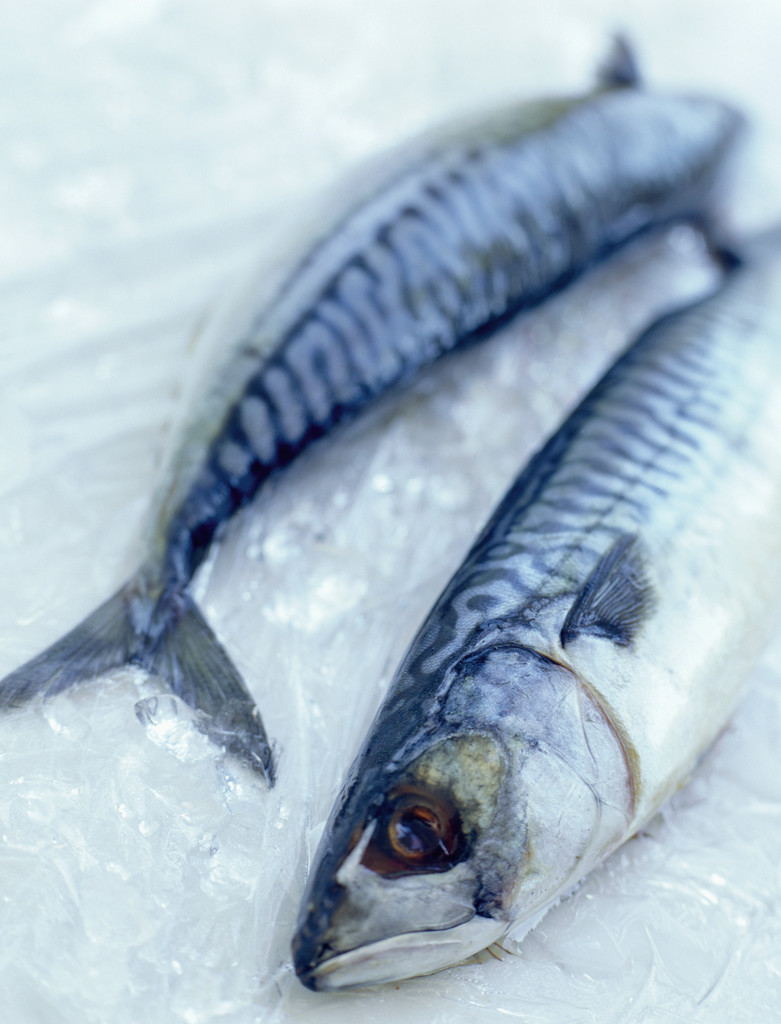Fresh fish is an excellent source of protein and oils. David Munns/Science Photo Library/Corbis
