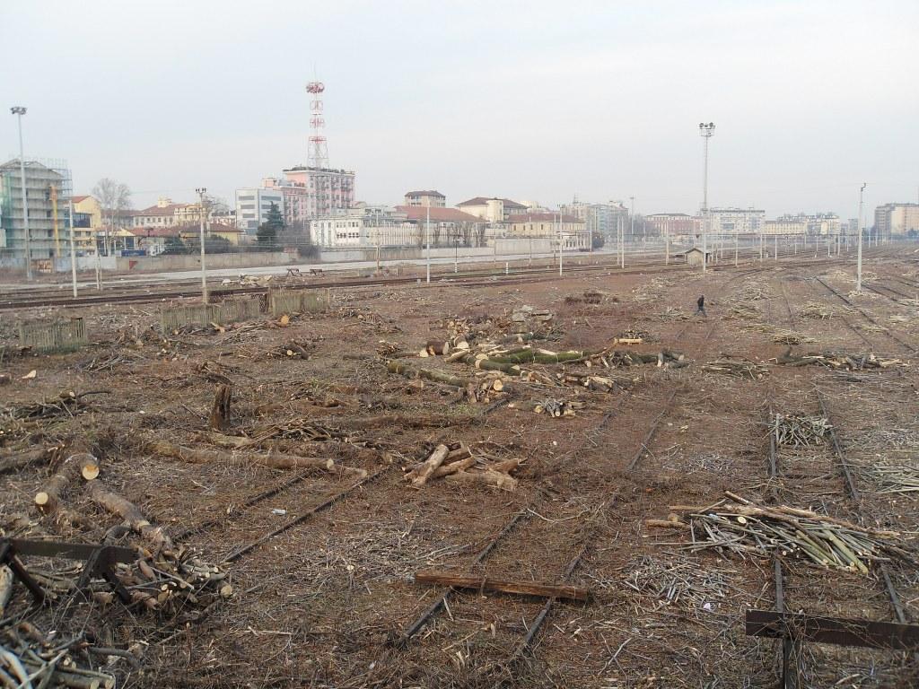 Vegetazione tagliata allo scalo Porta Romana - Milano