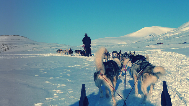 Svalbard - Adventdalen, album di Jon Kristian/flickr
