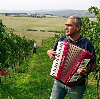 Carlo Cignozzi suona l'accordion nella vigna
