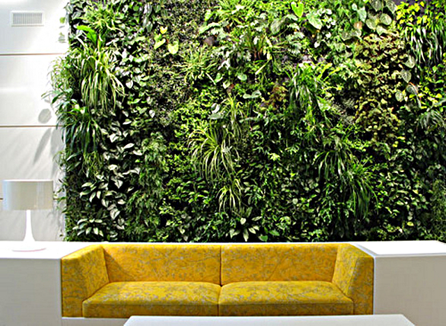 Inside vertical garden, album di jingdianjiaju2/flickr