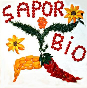 tutela dellambiente spiritualità risparmio energetico politiche energetiche medicina alternativa Marco Columbro ecologia diete salutari Dalai Lama consumatori biologico bioarchitettura ambiente