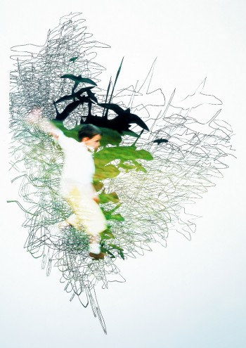 Flying Zoo (2004) 180cmx160cm, cut-out photograph