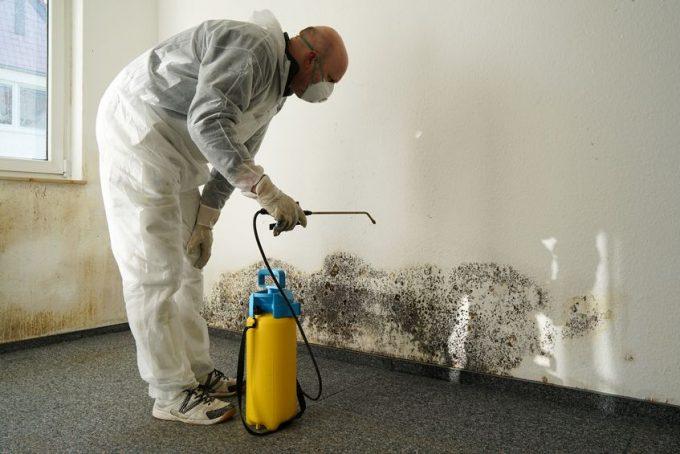 Inquinamento indoor: disinfestazione della muffa