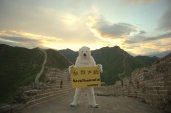 Orso polare sulla Grande Muraglia © Wu Di / Greenpeace