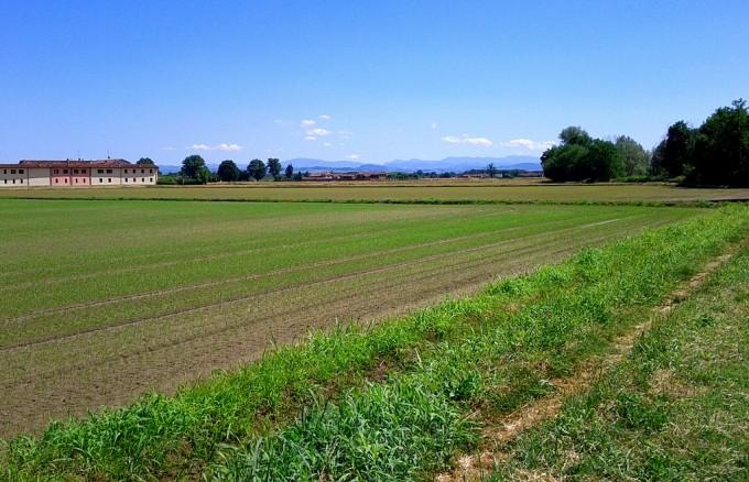 Agricoltura Foto di Luigi Rosa/flickr