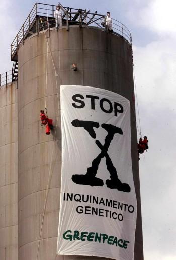 Attivisti di Greenpeace in corda doppia da un silo di un importatore di sementi italiana nell'Adriatico settentrionale città di Ravenna. - Image by © Giorgio Benvenuti/epa/Corbis