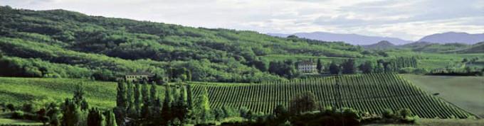 La Raia, colline di Novi Ligure, in provincia di Alessandria