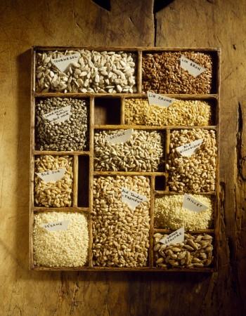 riso pasta pane miglio mais Kamut farro dieta mediterranea cereali integrali cereali biologici cereali avena