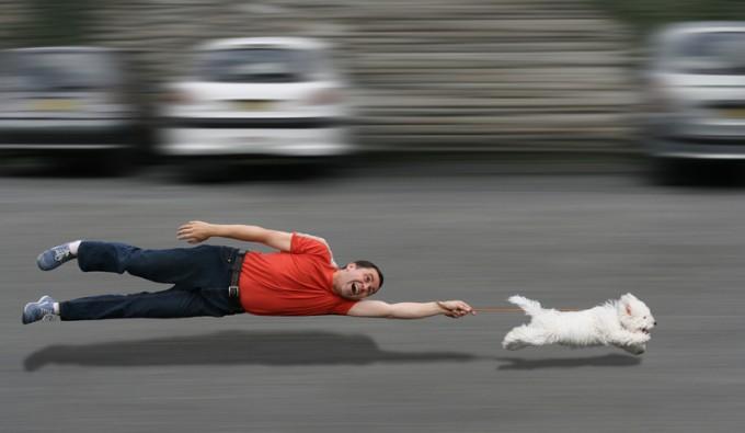 PetPro, l'azienda di servizi per proprietari di cani e gatti