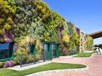 inquinamento dellaria inquinamento ambientale inquinamento acustico Guinnes giardini verticali Fiordaliso biodiversità architettura sostenibile