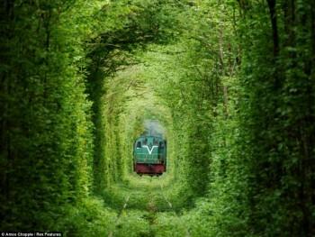 tunnel Klevan ferrovia ecodesign architettura sostenibile architettura green architettura del paesaggio