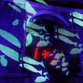 Album di Festival della Scienza/flickr