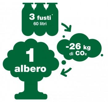 DD - Schema Albero