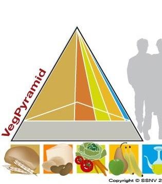 VegPyramid