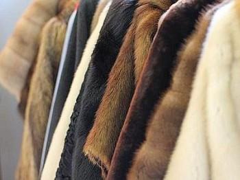 ritirate pellicce contaminate dopo denuncia LAV