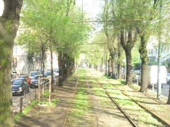 tram 12 Pierfrancesco Maran olmi mobilità Milano Mac Mahon