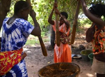 Donne che preparano olio di palma: ©Archivio Slow Food