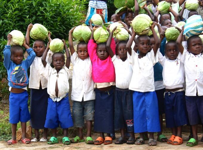 L'orto del giardino scolastico del istituto Weza di Nyangezi,  Repubblica Democratica del Congo