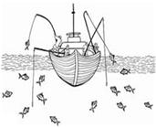 Pesca a canna