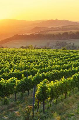 Todi, Umbria, Italy - Image by © Maurizio Rellini/SOPA RF/SOPA/Corbis