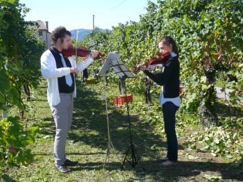 Concerto tra le vigne - Foto Fb azienda agricola Tra le rose