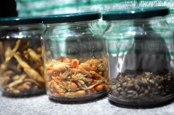 In alcune zone del Messico gli insetti sono un piatto prelibato